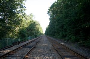 "The railroad route, more or less as Thoreau experienced it.  Dane commented, ""It's an interesting walk because where you are stepping is so monotonous and it makes you more aware of what changes around you as you cover ground."""