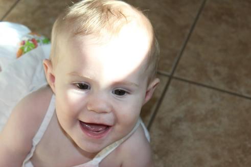 Wren, born 9-20-2012