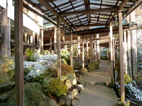 Ryokan in Hakone