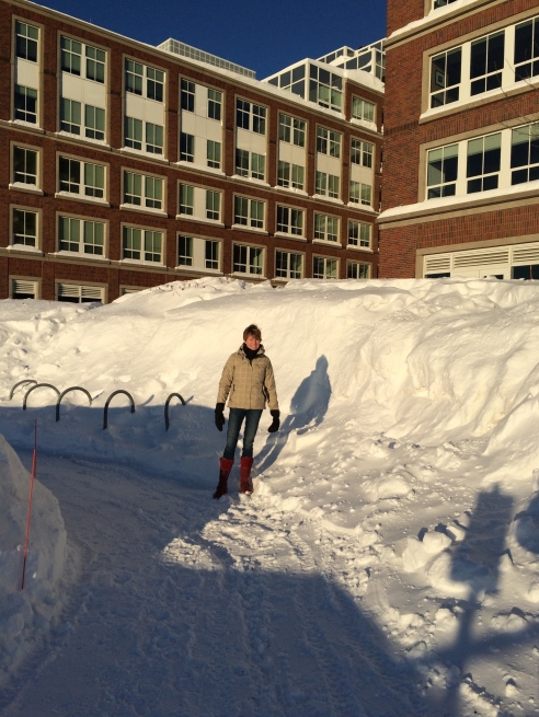 "The banked piles of snow.  Boston has created ""snow farms"" where the white stuff is hauled by graveyard shift crews, piling it up six and seven stories high and vainly trying to melt it with a couple of insufficient pieces of equipment borrowed from Northeastern University."
