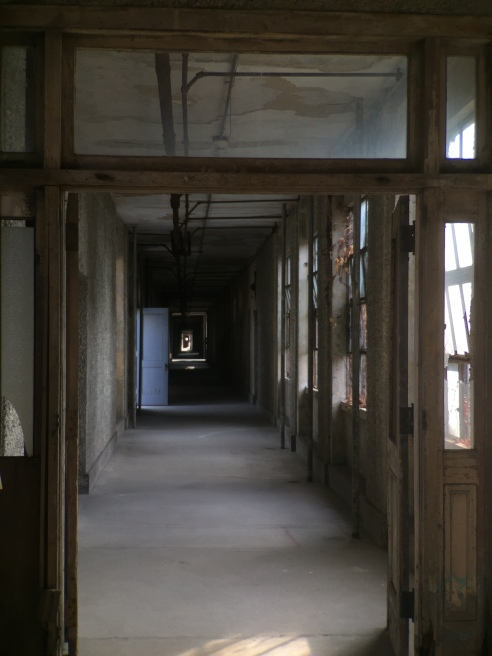 A typical hospital corridor, with great emphasis on natural light and airflow.